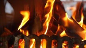 Крупный план горения огня в замедленном движении видеоматериал