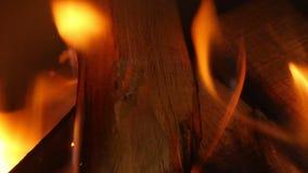 Крупный план горения огня видеоматериал