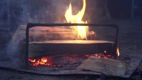 Крупный план горения огня сток-видео