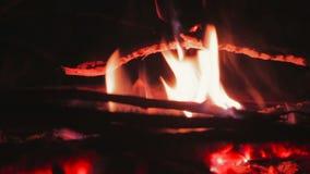 Крупный план гореть пламен сток-видео