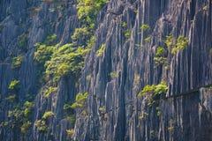 Крупный план горы karst, текстура утеса стоковая фотография rf