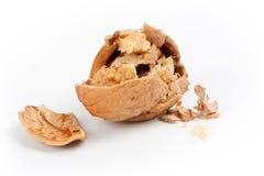 Крупный план грецкого ореха briken Стоковое Изображение RF