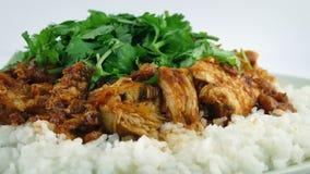 Крупный план еды Tikka Masala цыпленка сток-видео