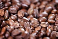 Крупный план зажаренных в духовке кофейных зерен Стоковые Изображения