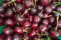 Крупный план красных зрелых сладостных вишен Стоковая Фотография