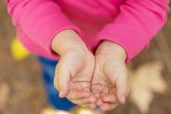 Крупный план ладоней детей пустой стоковая фотография