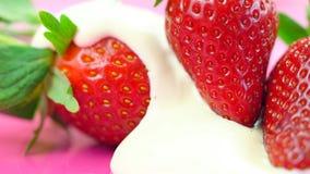 Крупный план макроса свежего плодоовощ клубники Стоковые Изображения RF