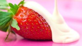 Крупный план макроса свежего плодоовощ клубники Стоковое фото RF