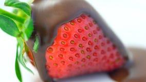 Крупный план макроса свежего плодоовощ клубники Стоковое Изображение RF