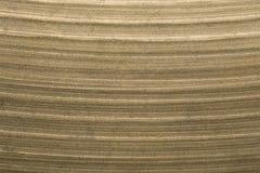 Крупный план макроса цимбалы барабанчика Стоковая Фотография RF