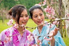 Крупный план молодых женских туристов наблюдая цветки Стоковые Фото