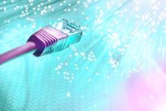 Крупный план на конце розового кабеля сети стекловолокна на turquo Стоковые Изображения