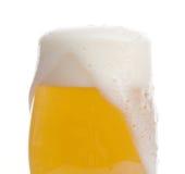 крупный план пива Стоковое фото RF