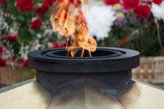 Крупный план пламени Ethernal Стоковая Фотография RF