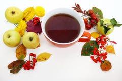 крупный план предпосылки осени красит красный цвет листьев плюща померанцовый Красочные листья, чай, яблоки и ягоды красного цвет Стоковые Фотографии RF