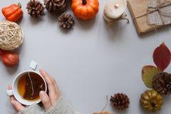 крупный план предпосылки осени красит красный цвет листьев плюща померанцовый Руки держа чашку чаю, украшение осени на серой пред Стоковое Фото