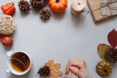 крупный план предпосылки осени красит красный цвет листьев плюща померанцовый Женские руки, чашка чаю, украшение осени на серой п Стоковая Фотография