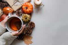 крупный план предпосылки осени красит красный цвет листьев плюща померанцовый Руки держа чашку чаю, украшение осени на серой пред Стоковые Фото