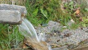 Крупный план реки в лесе, детали текущей воды Чисто поток горы с чистой водой пропускает через зеленую зону сток-видео