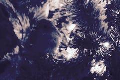 Крупный план рождественской елки - деталь стоковые изображения