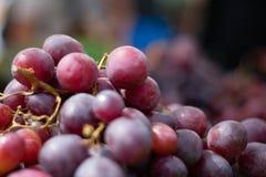 Крупный план свежих виноградин на расплывчатой предпосылке стоковое фото rf
