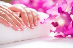 Крупный план снял красивых женских dands с ногтями Франции mani Стоковые Изображения RF