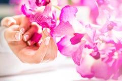 Крупный план снял красивых женских dands с ногтями Франции mani Стоковое Фото