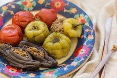 Крупный план снял томатов, перцев и баклажана мяса заполненных Стоковое Изображение