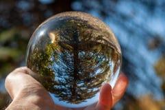 Крупный план стеклянного шарика стоковые фотографии rf