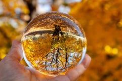 Крупный план стеклянного шарика стоковое изображение rf