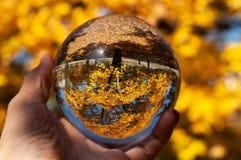 Крупный план стеклянного шарика стоковая фотография rf