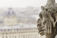 Крупный план химеры Нотр-Дам франка собора Парижа Стоковое фото RF