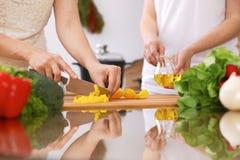 Крупный план человеческих рук варя в кухне Мать и дочь или 2 женских друз режа овощи для свежего салата Стоковое Изображение