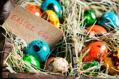 Крупный план яичек для пасхи в деревянной маленькой коробке Стоковая Фотография RF