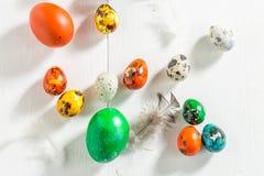 Крупный план яичек триперсток и курицы для пасхи Стоковые Изображения