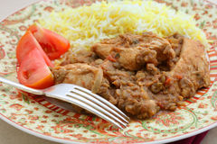Крупный план dhansak цыпленка Стоковое Фото