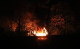 Крупный пожар горит в лесе вечером стоковая фотография