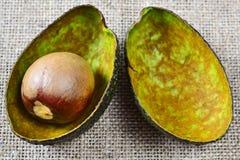 Крупный план авокадоа косточки Стоковое фото RF