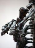 Крупный план ладони динозавра каркасный Стоковые Фотографии RF