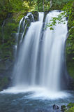 Крупный план величественного водопада падений каскадируя над мшистыми утесами в парке McDowell, Орегоне Стоковое Изображение RF