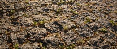 Крупный план вымощая камня Стоковое фото RF