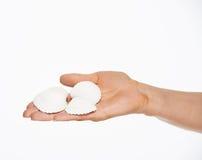 Крупный план в наличии держа seashells стоковое изображение rf