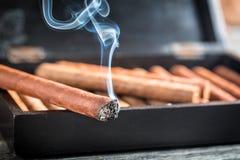 Крупный план горящей сигары Стоковая Фотография