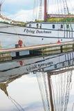 Крупный план голландца летания Стоковые Изображения RF