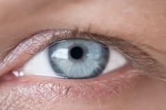 Крупный план голубого глаза ` s женщины Стоковое Изображение