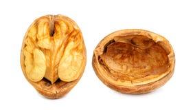 Крупный план грецких орехов изолированный на белизне Стоковые Изображения RF