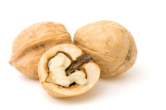Крупный план грецких орехов на белизне Стоковое Изображение