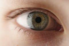 Крупный план глаза девочка-подростка зеленого смотря прямо Стоковая Фотография RF