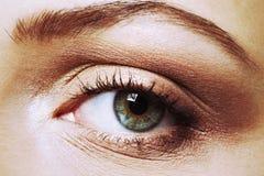 крупный план глаза Стоковые Фотографии RF
