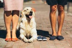 Крупный план женских и мужских ног в вскользь ботинках Стоковая Фотография RF